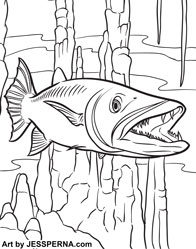 Children\'s Coloring Pages Book Illustrator for Hire