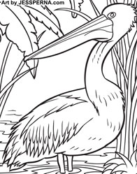 Brown Pelican Coloring Page - Get Coloring Pages | 249x196