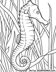 seahorse coloring page illustrator