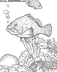 Childrens Coloring Pages Book Illustrator For Hire